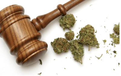 Hey California, Know Your Weed Laws by YEW Online