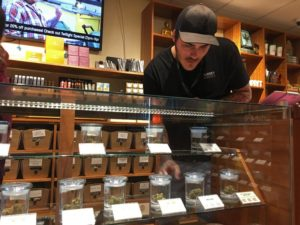 license to sell marijuana