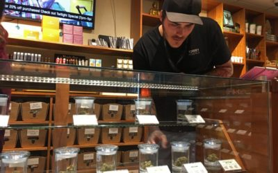 Torrey Holistics is first in California to be issued license to sell marijuana for adult use!