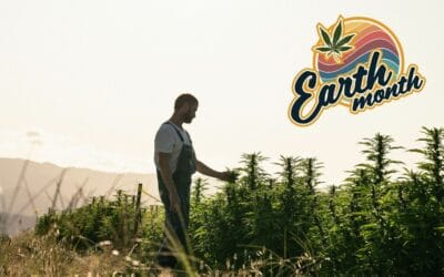 The Sungrown Difference