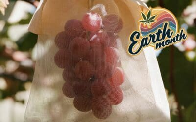 In Search of a Closed-Loop Edible: An Interview with Nathan Cozzolino of Rose