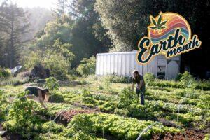 Brother David visits Sun+Earth certified cannabis farm