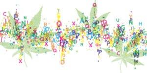 entourage effect illustration letters cannabis leaves