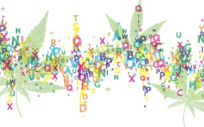 The Entourage Effect in Cannabis & Breast Cancer